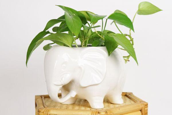 Elefantenübertopf weiß