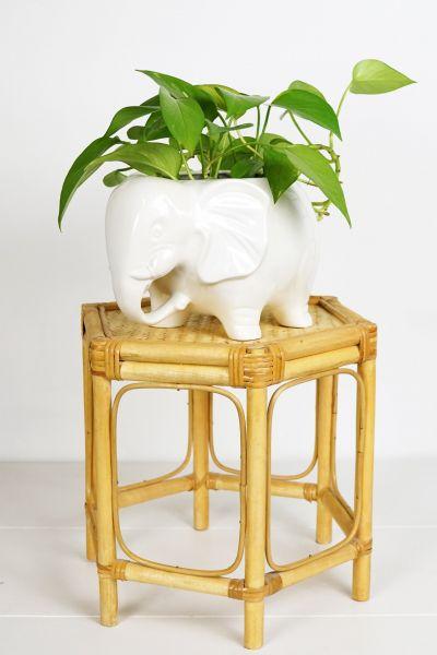 Pflanzenhocker