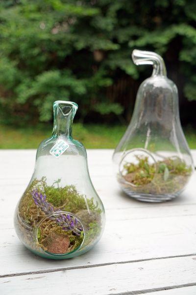 Pflanzgefäß aus Glas in Form einer Birne zum Bepflanzen und Dekorieren für Sukkulenten und Zimmerpflanzen als Deko für Indoorgarten passend zum Urban Jungle Stil deines gemütlichen Wohnzimmers.